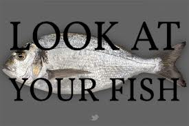 Look at your Fish